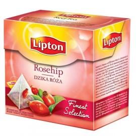 Früchtetee-Dornbusch 20 Lipton Pyramiden.