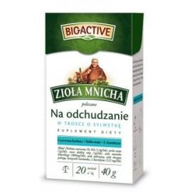 BIOACTIVE- na odchudzanie 20 beutel 40 g