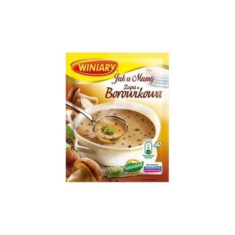 WINIARY-Steinpilz Suppe
